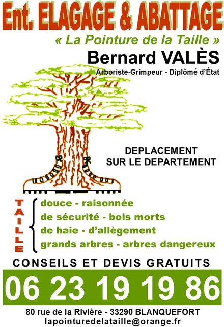 Elagage Bernard Valès